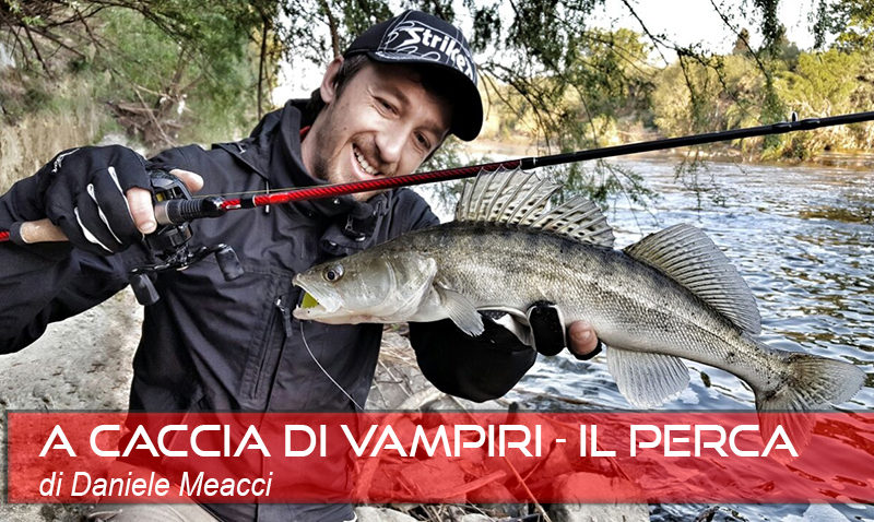 FISHING - COVER IL PERCA